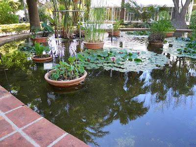 Arte y jardiner a estanques y jardines acu ticos for Ejemplos de jardines