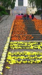 Angers, Fransa Merdivenler