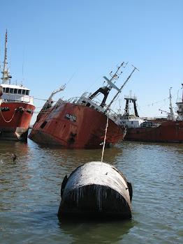 Holberg, el buque que se hundio dos veces
