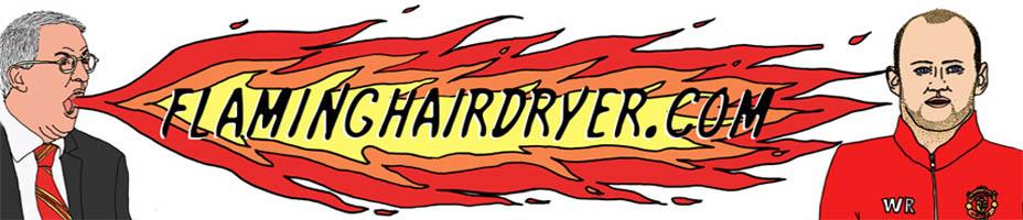 Flaminghairdryer.com
