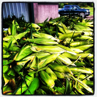 Farm Fresh Sweet Corn
