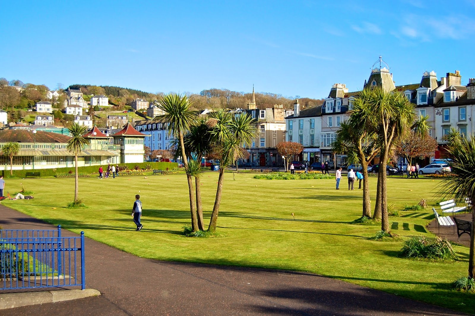 Palm trees on Rothesay's promenade