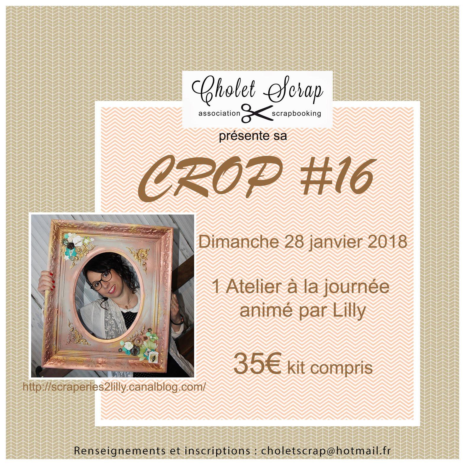 Crop #16