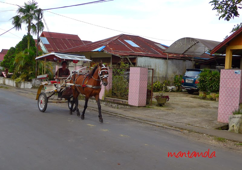 Horse cart or Bendi, Andong, Delman