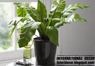 artificial plants for home decorating