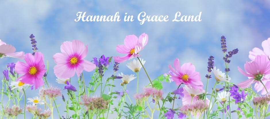 Hannah in Grace Land