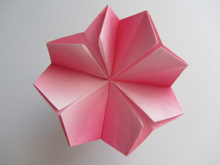 Origami Instructions Origami Cherry Blossom