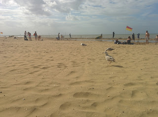 Margate Beach, nice and Sandy