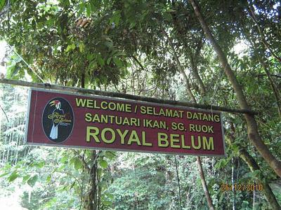 Royal Belum