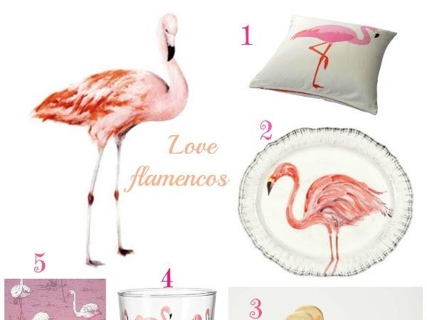 Love flamencos