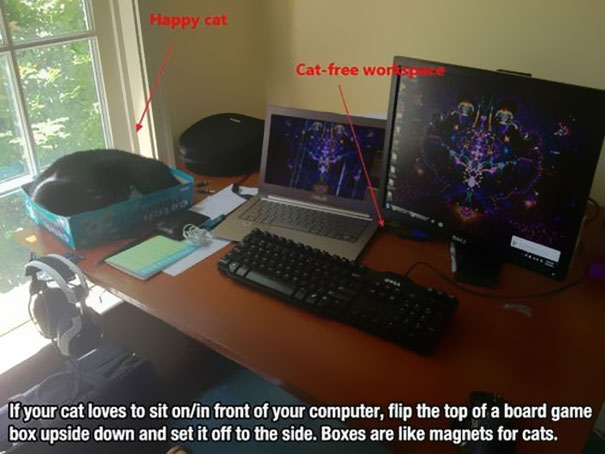 Daily life hacks