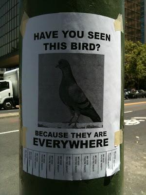 bird Tear off flyer contest at Threadless