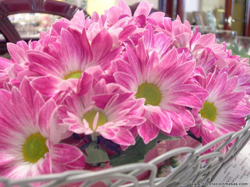 Decoracion de mesas: Mesa con flores: Margaritas rosas