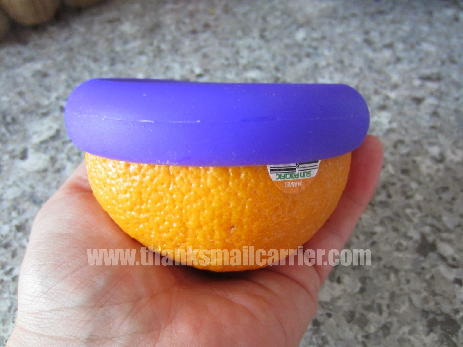 Food Huggers fruit saver