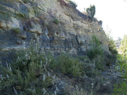 Pedrera del Rubió o de Serracanta