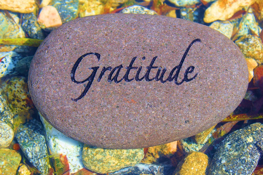 Sense of Gratitude in Students
