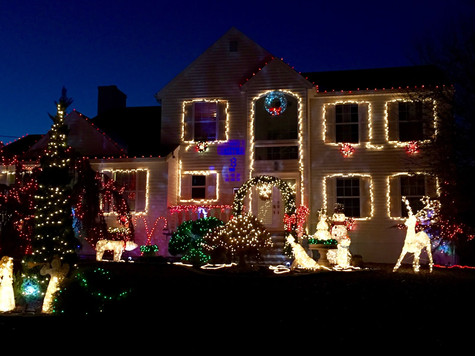 It\'s All About Purple: Christmas Lights and Store Windows