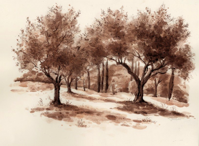 How to draw trees a question and answer urban sketchers
