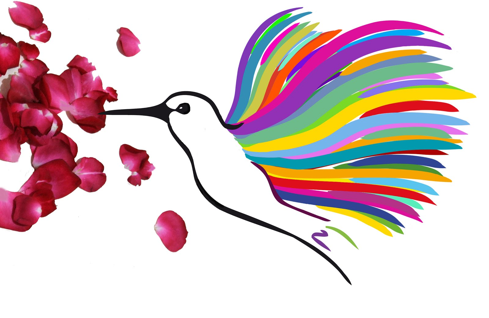El camíno del colibrí