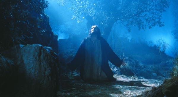 imagens do jardim getsemani: jardim chamado edem e vai até os evangelhos em outro jardim o
