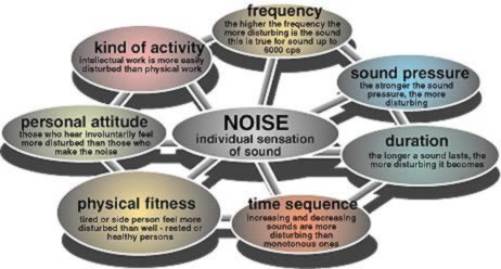 Noise Pollution Effecs