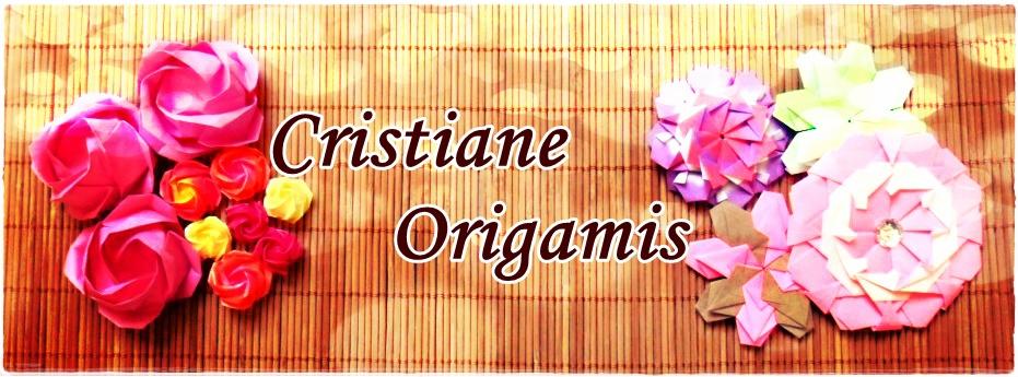 Cristiane Origamis