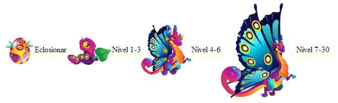 imagen del crecimiento del dragon mariposa