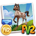 FV2Cheat Prized Brown and White Knabstrupper Horse