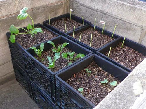 http://www.instructables.com/id/Milk-Crate-Air-Pot-Square-Foot-Urban-Container-G/