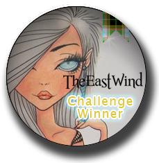 The East wind Challenge