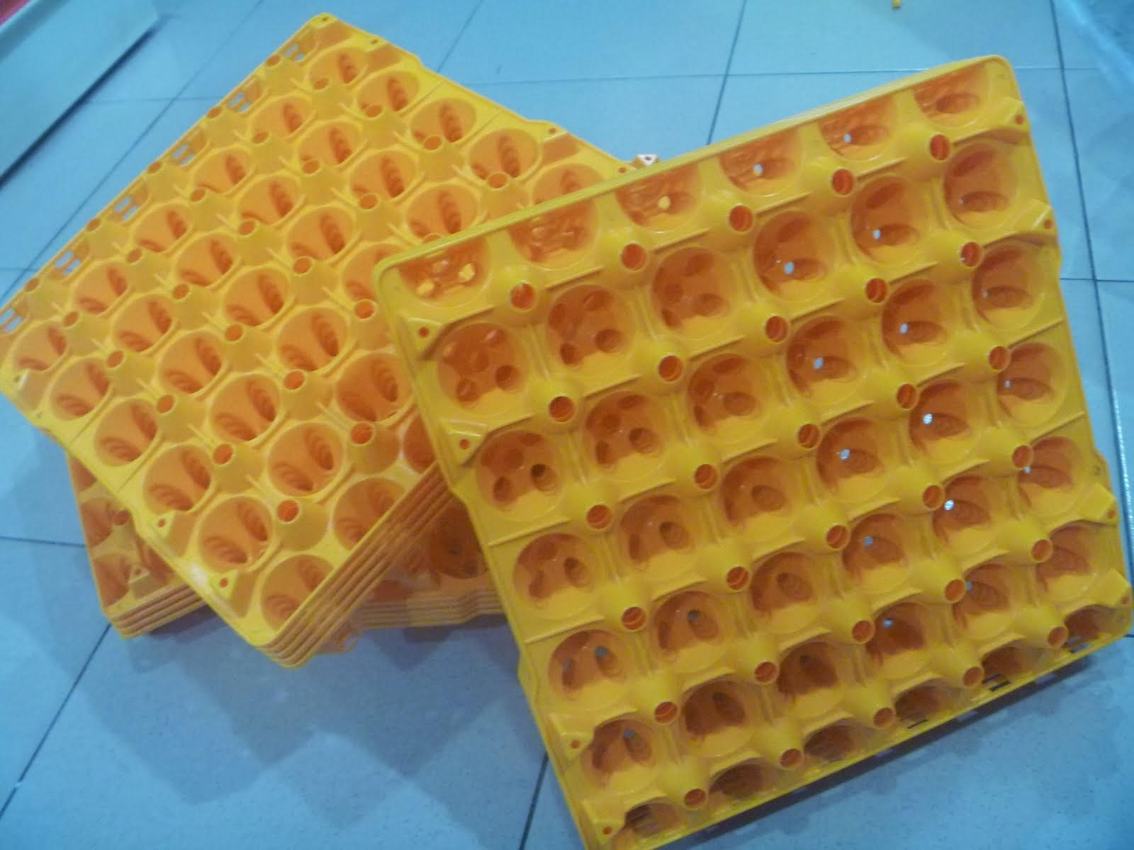 SARANG TELUR ..RM 6.00 shj (cash & carry)