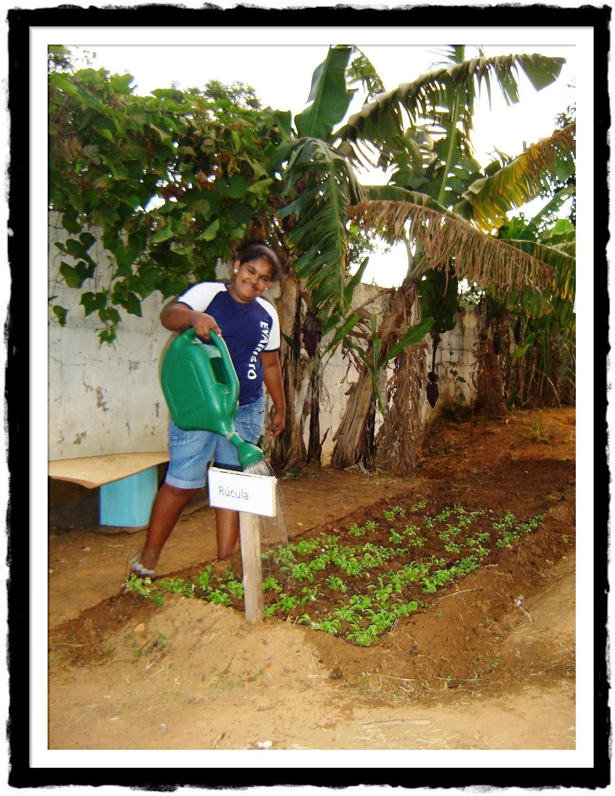 horta e jardim na escolaFazer o tempo Projeto de Ciências Horta na