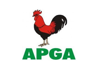 2019: Why Igbo may ignore PDP, R-APC, others to vote for Buhari – APGA member, Ezeonwuka