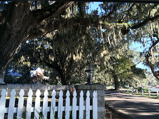 Near Wormsloe State Park is Isle of Hope Historic District | Photo (c) Sandy Traub / Zeigler House Inn