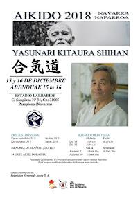Curso de Aikido con Kitaura Shihan