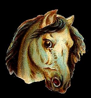 horse illustration vintage