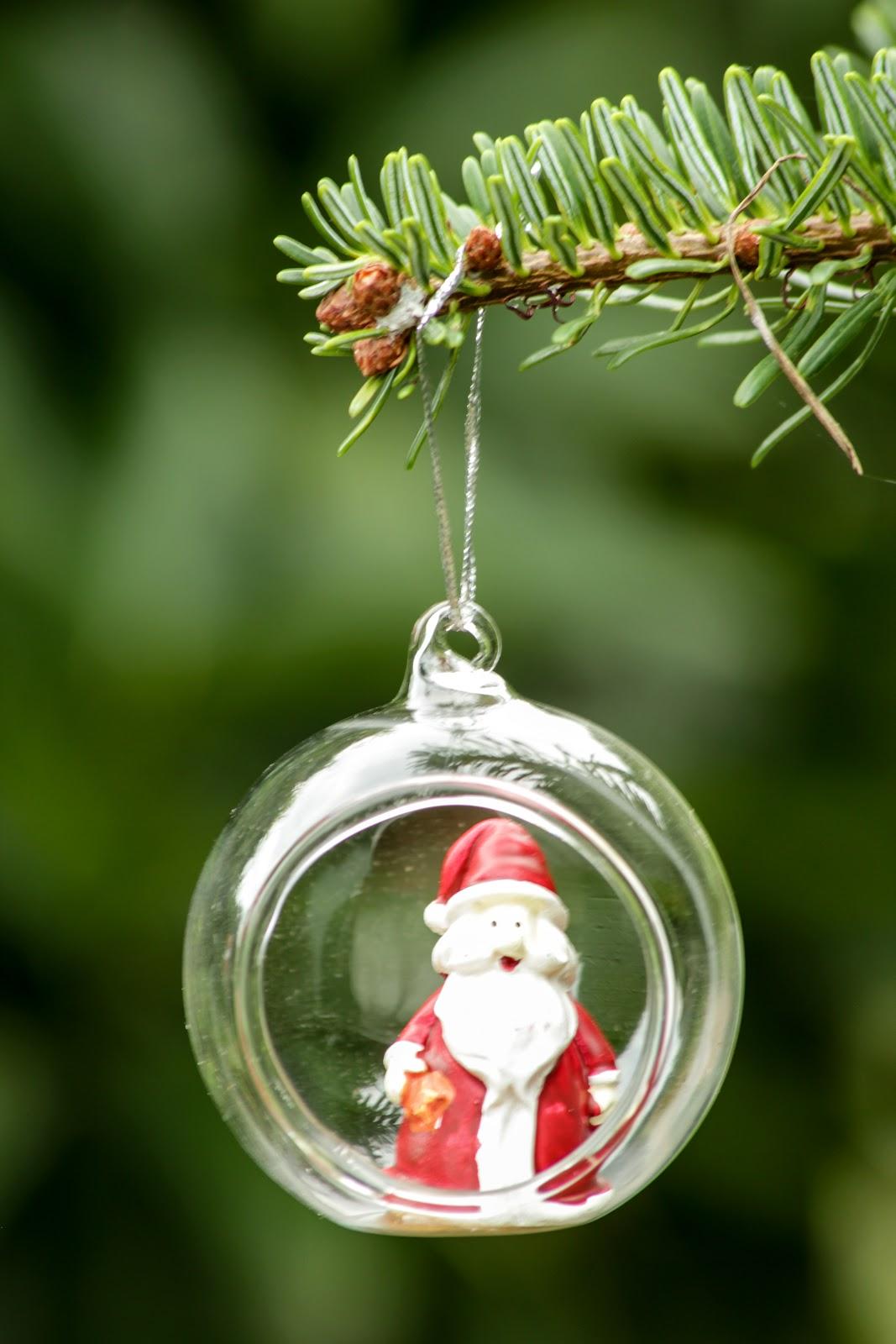 PlantaMer: Bolas de Navidad con Plantas