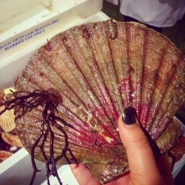 Billingsgate Market seafood