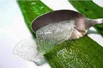 El gel del aloe vera para la piel