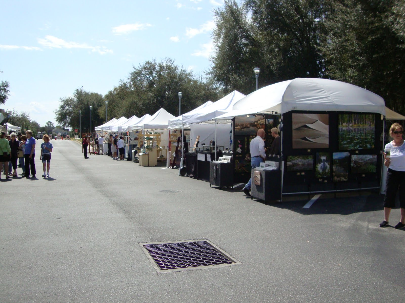 The tents are set up in the street in this so called u0027townu0027 which reminds you of Louisiana and plantations. The houses are so cool looking with large ... & Robbieu0027s Paw Prints: Tioga Winter Art Fair