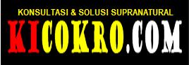 KICOKRO.COM