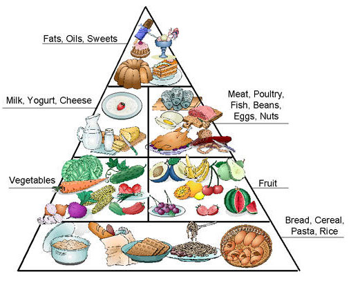 Healthy Food Pyramid For Kids Australia on Healthy Food Pyramid Australia For Kids