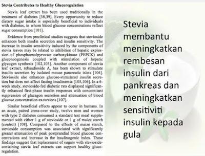 stevia rawat luka kencing manis