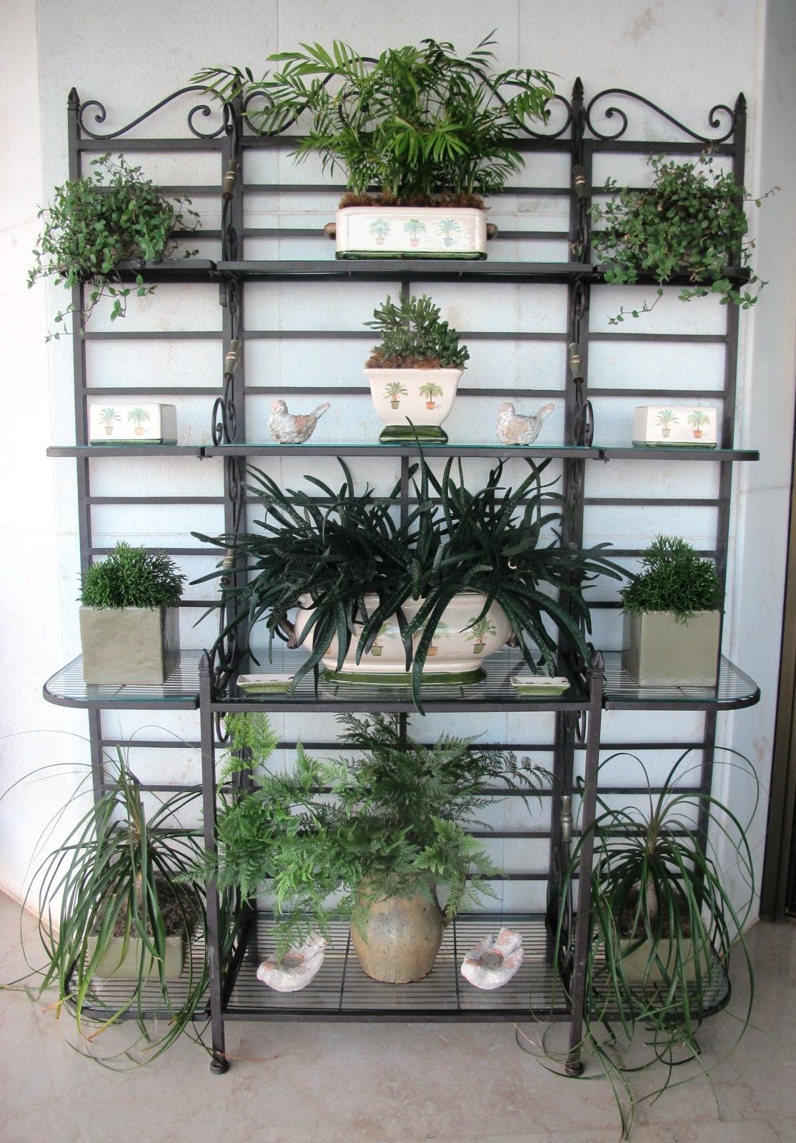 Blog da andrea rudge minhas estantes - Estantes para plantas ...