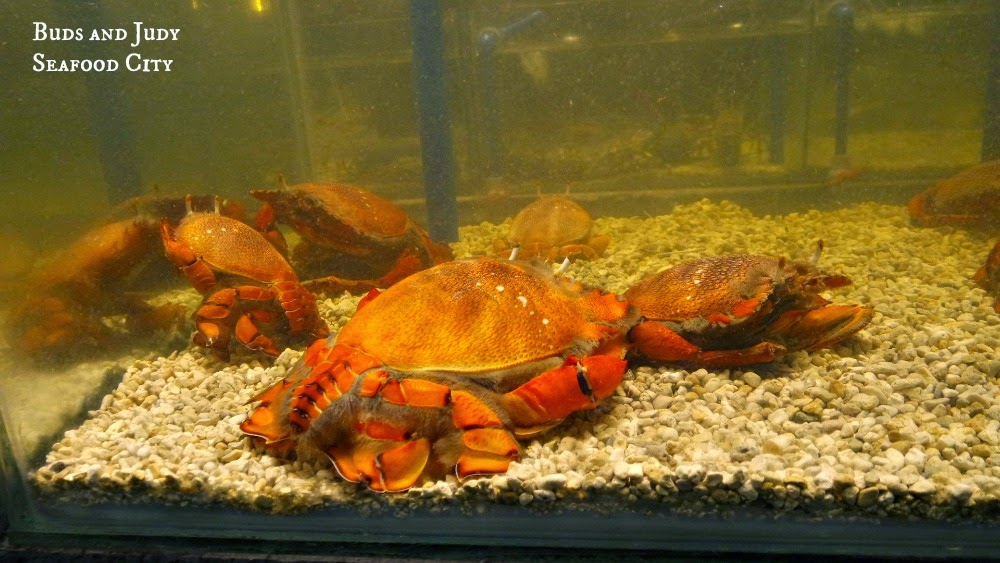 Seafood City. Seafood Restaurant in Cebu City, crabs