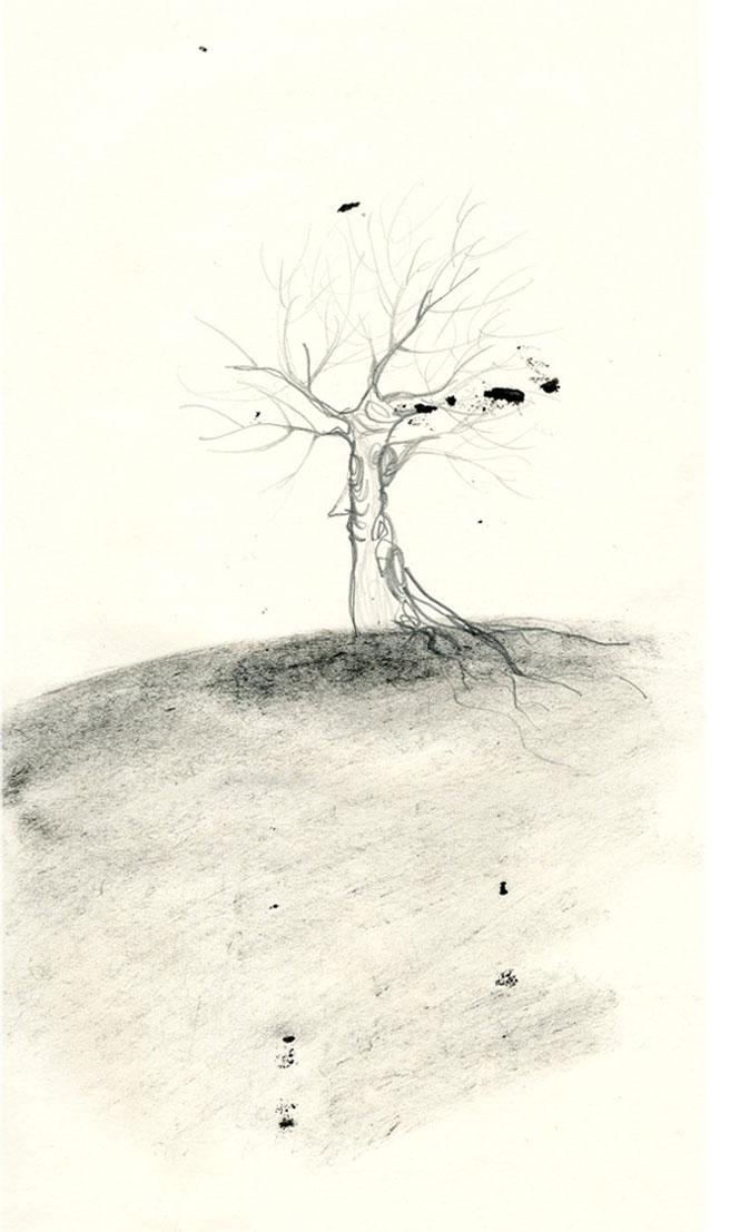francesca ballarini albero illustrazione