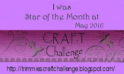 Star of the Month at CRAFT