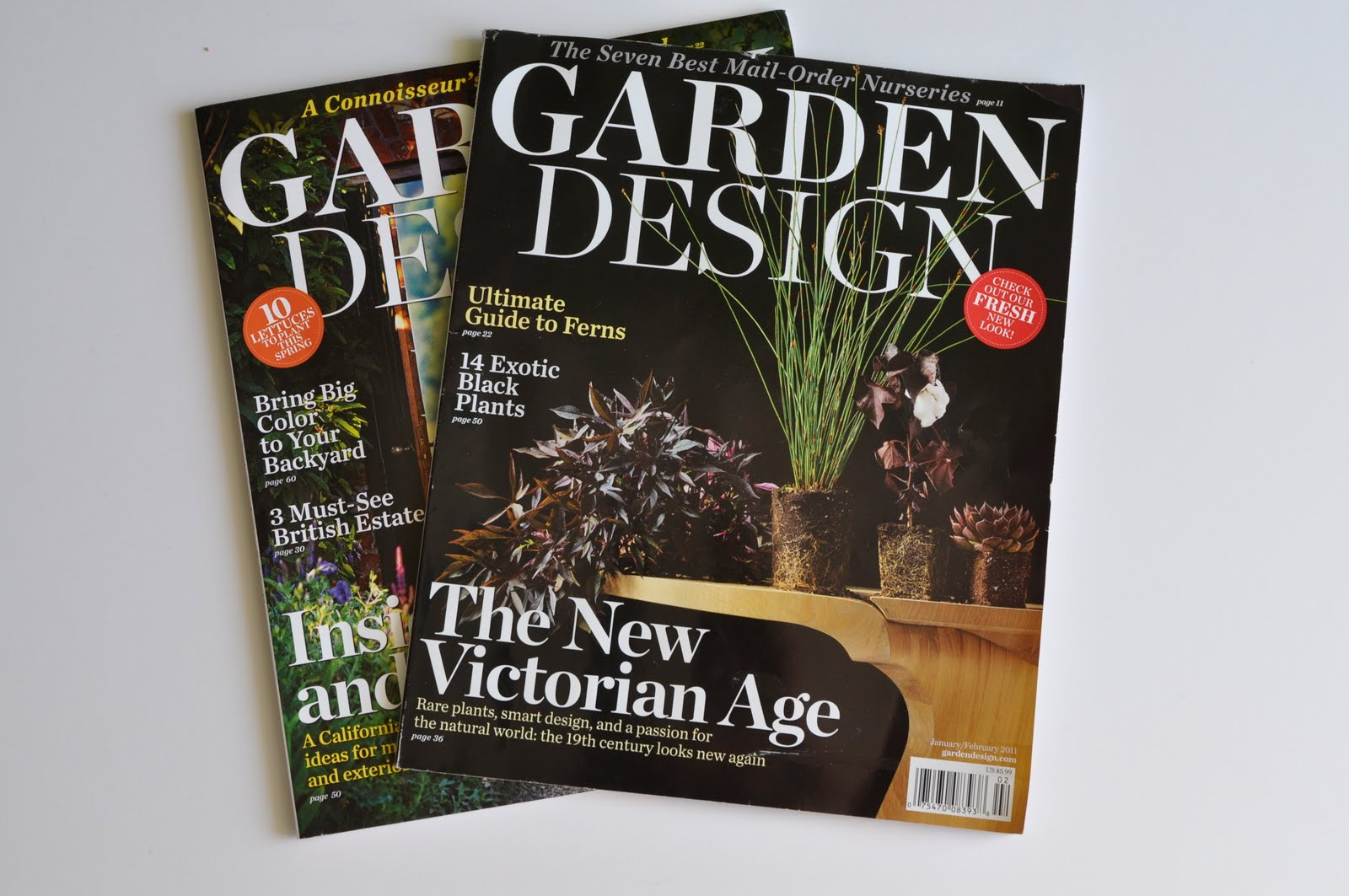 Redesigned Garden Design Magazine Thinking Outside the Boxwood