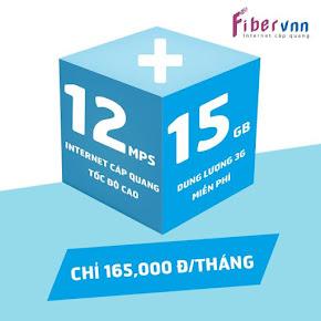 Cáp quang VNPT Fm 12M-165K