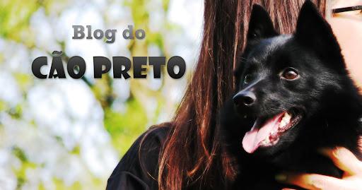 Cão Preto